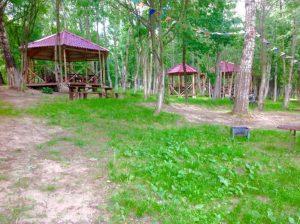 площадка для пикника