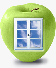Производство деревянных окон из дуба, сосны, лиственницы. Пластиковые окна.