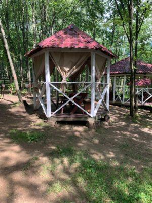 беседки в лесной зоне до 8 гостей